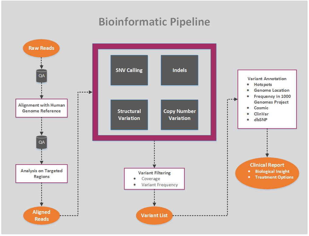 Bioinformatic Pipeline