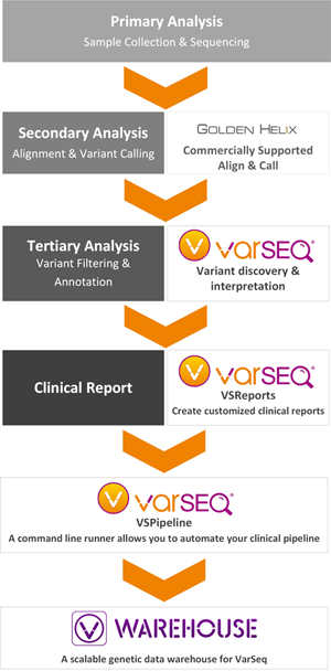 VarSeq Clincal Suite