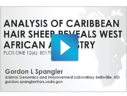Whole Genome Structural Analysis of Caribbean Hair Sheep reveals quantitative link to West African Ancestry