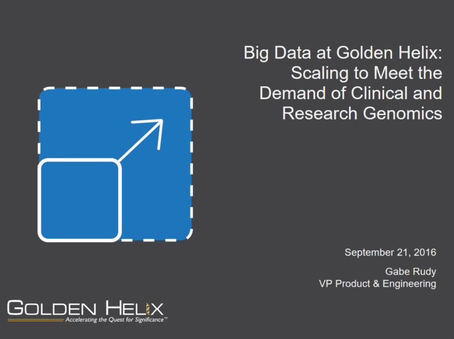Big Data at Golden Helix