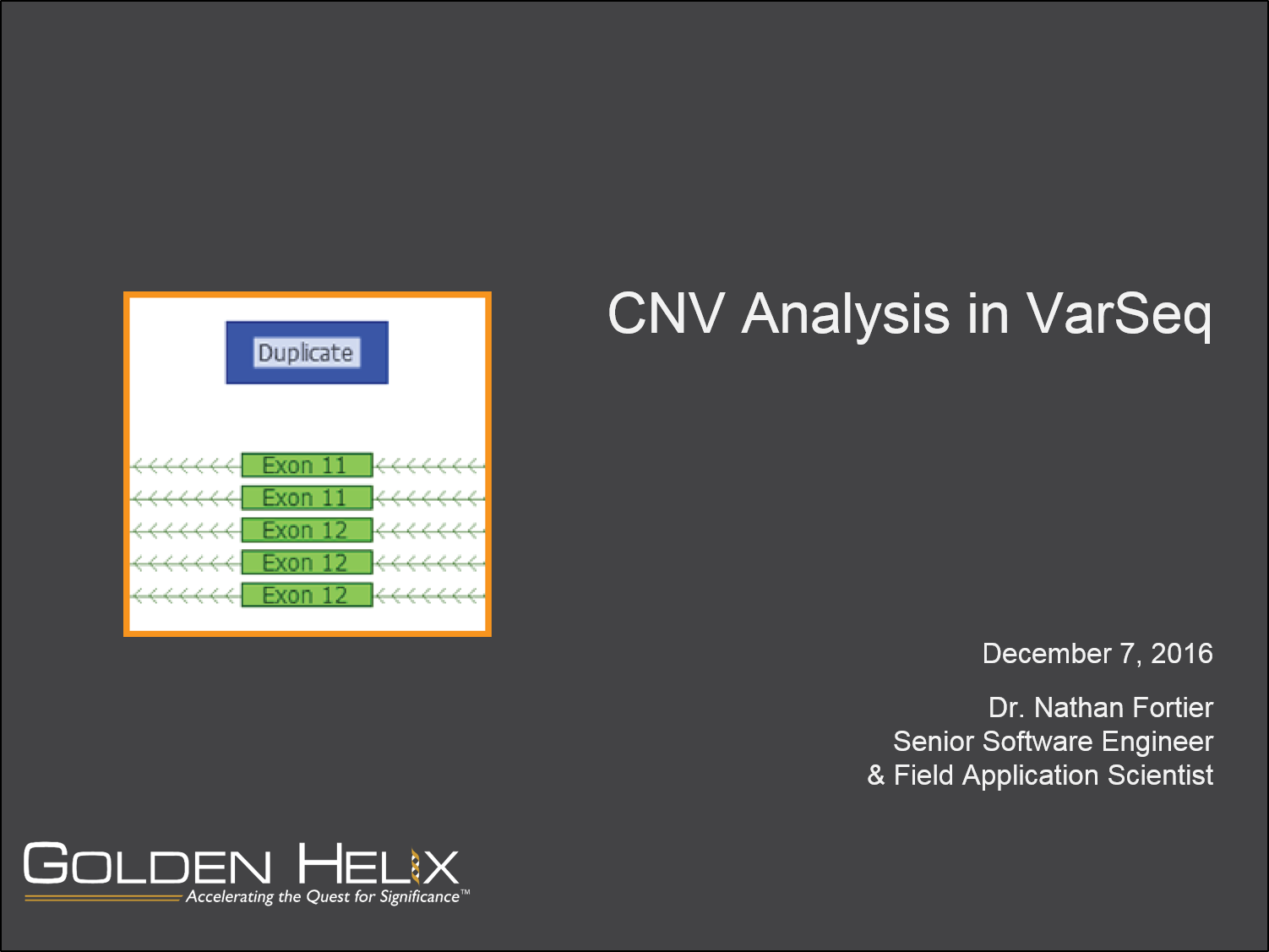 CNV Analysis in VarSeq